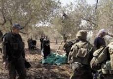 الاحتلال يقمع مشاركين في قطف الزيتون