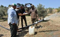 العمل الزراعي يستمر في تمكين وتعزيز صمود المزارعين في المناطق الحدودية