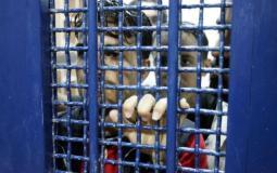 الأطفال في سجون الاحتلال- أرشيفية
