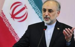 وزير الخارجية الإيراني جواد ظريف .