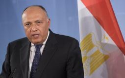 وزير الخارجية المصري سامح شكري.jpg