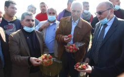 جولة وزارة الزراعة في شمال قطاع غزة