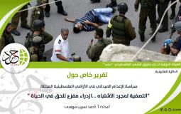 الهيئة الدولية لدعم حقوق الشعب الفلسطيني