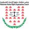 مجلس منظمات حقوق الإنسان الفلسطينية
